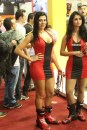Gatas_Salao_2_Rodas_2013 (210)